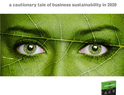 A cautionary tale of Business Sustainability in 2020